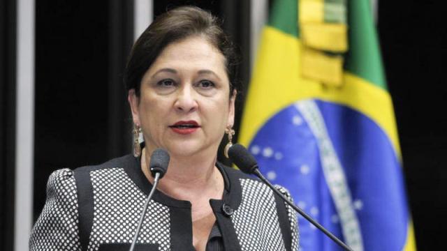 Agronegócio: Ministra da Agricultura visita Porto de Santana e palestra na Expofeira