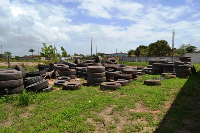 VÍDEO mostra montanhas de pneus abandonados com larvas do aedes aegypti