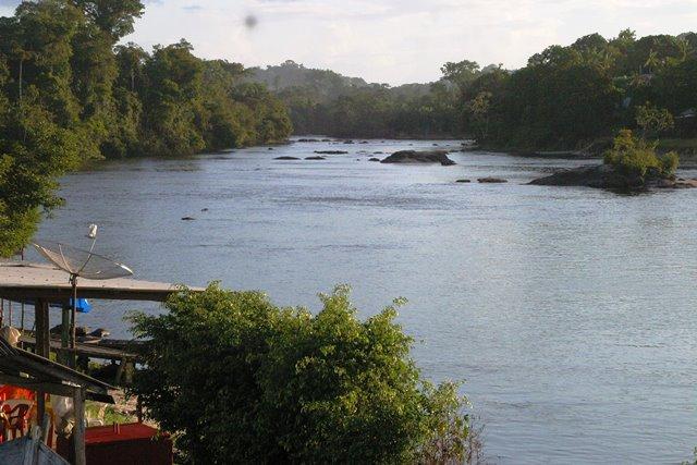 Conheça Vila Brasil, um paraíso verde