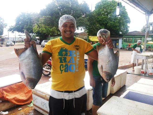 Veja onde comprar peixe barato para a Semana Santa