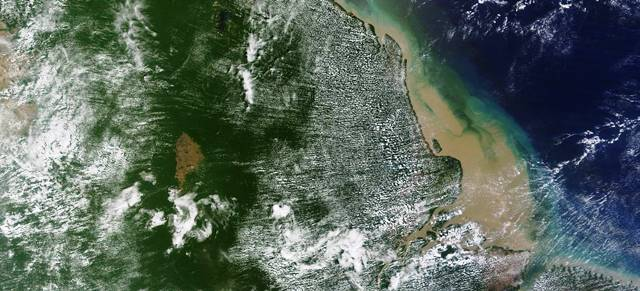 Cientistas anunciam descoberta de recife de corais na Foz do Amazonas