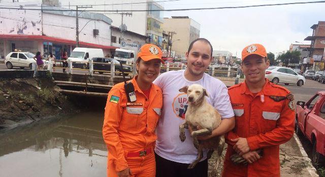 Bombeiros resgatam cadela jogada pelo dono dentro de canal