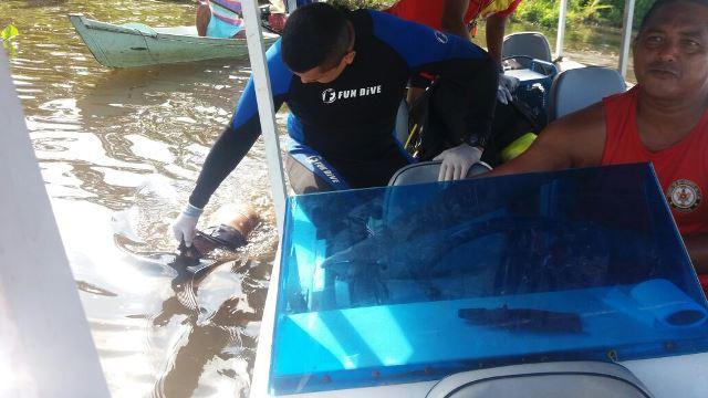 Bombeiros localizam corpo de criança desaparecida no Jari