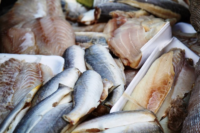 400 Kg de peixe apreendido serão destruídos