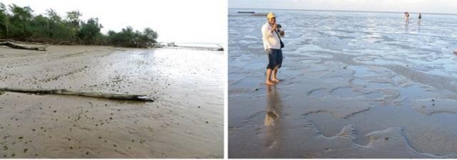 Pesquisadora nas praias do Parazinho (Bailique) e Ilha Vitória (Oiapoque). Fotos: Arquivo pessoal