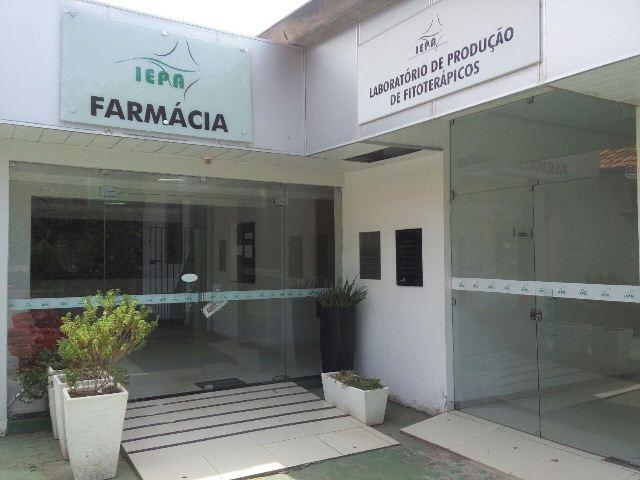 Burocracia impede expansão de produtos fitoterápicos do AP