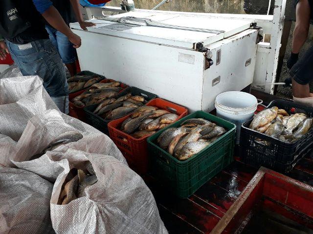 PM apreende quase 900kg de peixe