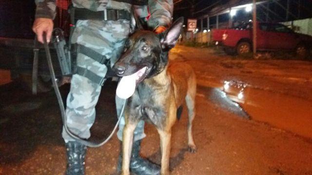 Cão do Bope encontra drogas em lixo de traficante