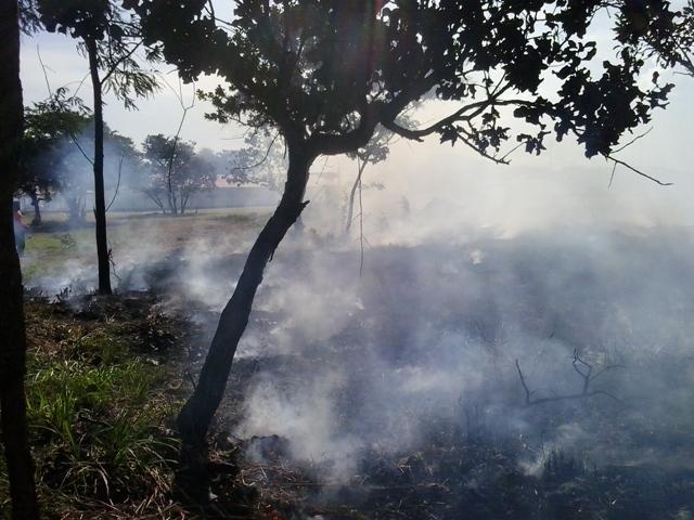 Ibama extingui brigadas de incêndio do Amapá