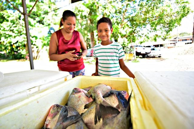 Produtores de peixe vendem 10 toneladas em Mazagão