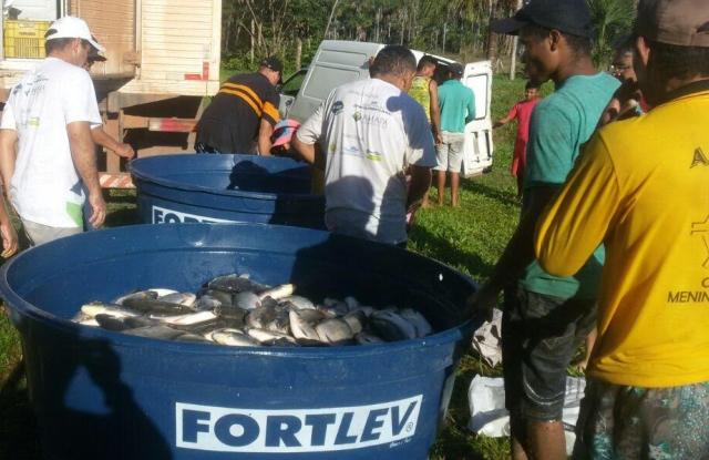 Incentivo faz preço do pescado cair pela metade em feira; confira os dias e horários