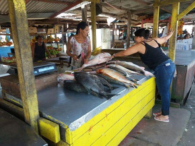 Feira de peixes da 13 de Setembro será transferida