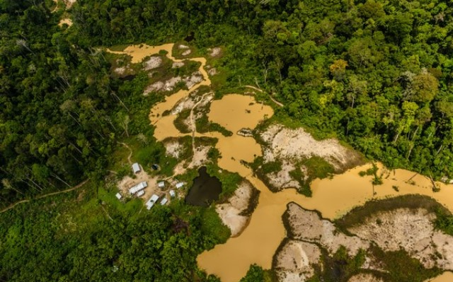 Greenpeace identifica garimpos e pistas de pouso ilegais entre AP e PA