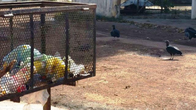 Taxa do Lixo: associações de Santana se mobilizam contra a lei