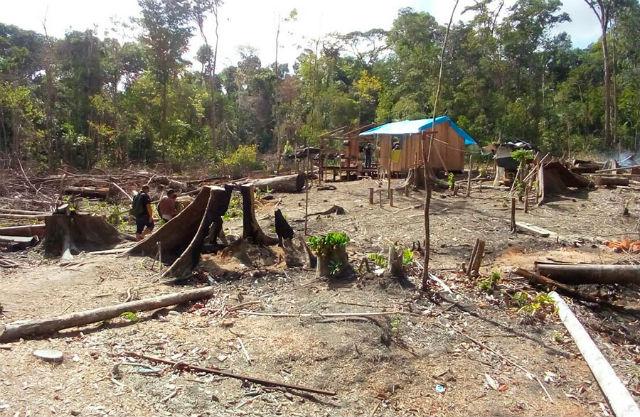 Fiscalização busca garimpo ilegal na região da Flota