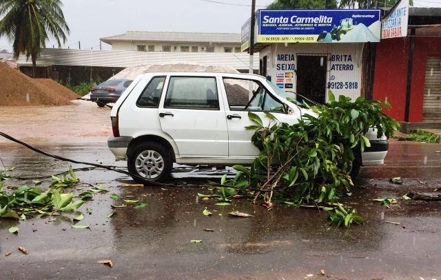 Árvore cai e atinge carro no Buritizal