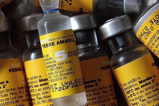 Mesmo sem risco de epidemia, AP prepara plano de ação contra a febre amarela