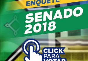 Enquete para o senado: confira o resultado final