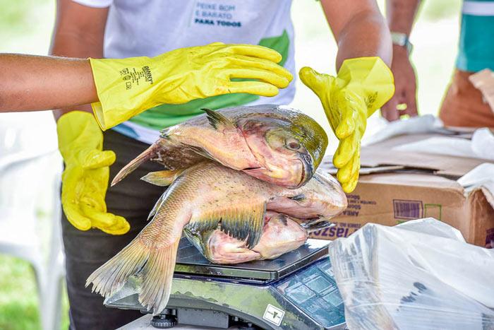 """""""Peixe Popular"""" movimentou mais de R$ 800 mil, diz Pescap"""