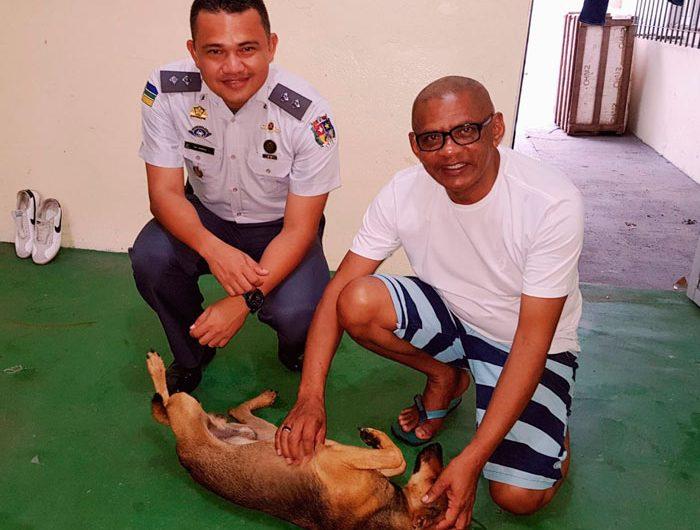 Padre adota cachorro ferido por atirador desconhecido