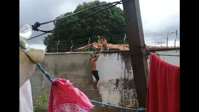 VÍDEO mostra menores fugindo do Cesein, pelo muro