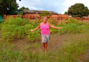 Moradores fazem horta em rua abandonada