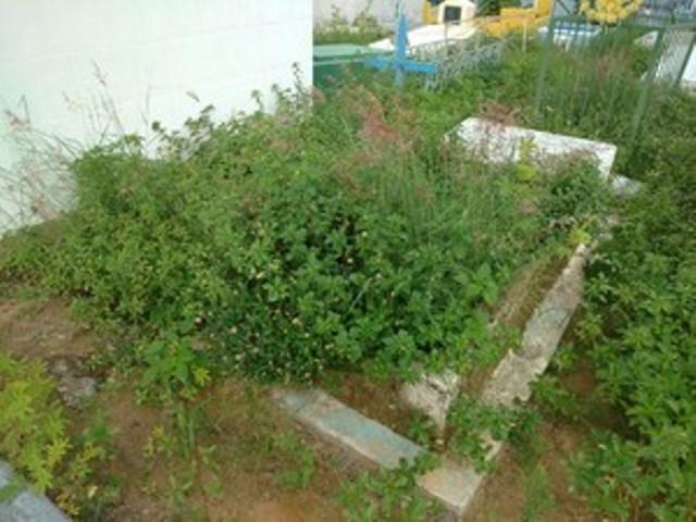 Visitantes reclamam da limpeza no Cemitério São José