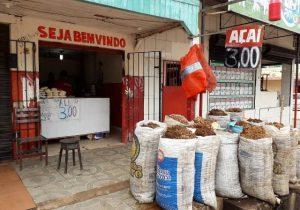 Com alta safra, litro do açaí é vendido a R$ 3 em bairro de Macapá