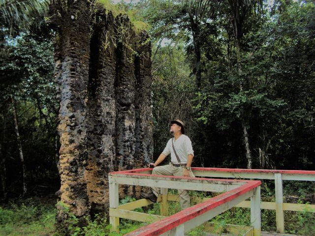 Estudo sobre a Amazônia vai englobar riquezas do Amapá
