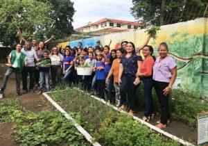 Projeto 'Escola Verde' começa a colher bons frutos