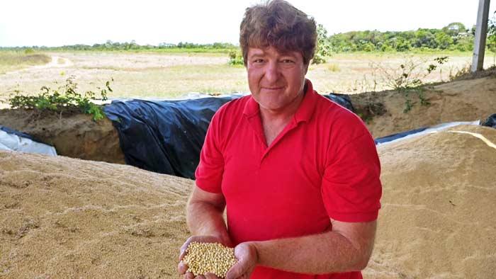 Produção de soja vai esperar mais 1 mês para ser embarcada