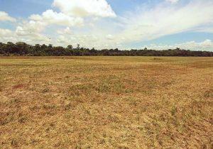 Impasse sobre licenciamentos ambientais no Amapá vai parar na Justiça