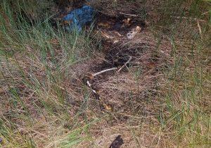 Cadáver é encontrado na área do Exército, em Macapá