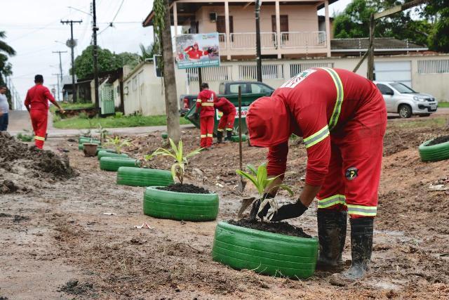 Moradores trocam lixeira viciada por plantas