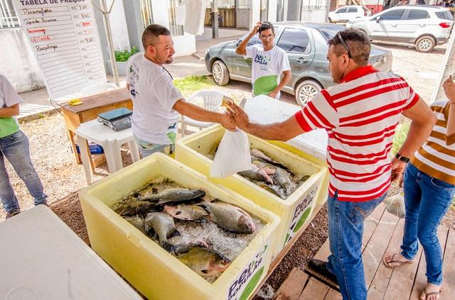 Pescado será vendido entre R$ 7 e R$ 15 na Semana Santa
