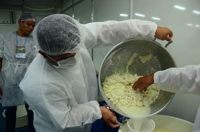Oficinas vão ensinar a produção de queijos na ExpoBúfalo