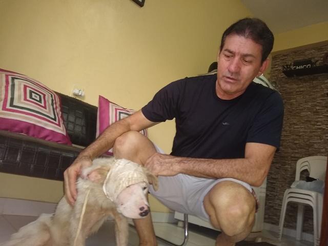 Após salvar cão ferido com terçadada, policiais procuram novo lar para o animal