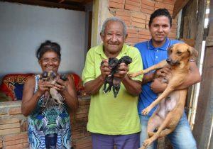 Um final feliz para cadela e filhotes abandonados em bacia