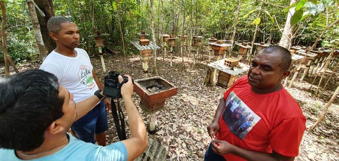 Com 400 colmeias, quilombolas investem na produção de mel no Amapá