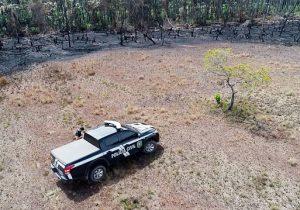 Amapá adere a decreto de Bolsonaro e Forças Armadas atuarão contra queimadas