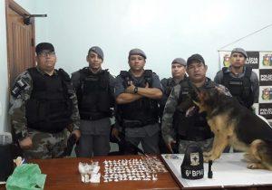 Cão farejador encontra droga em forro falso de guarda-roupa
