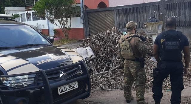 PF prende homem com pornografia infantil em Macapá