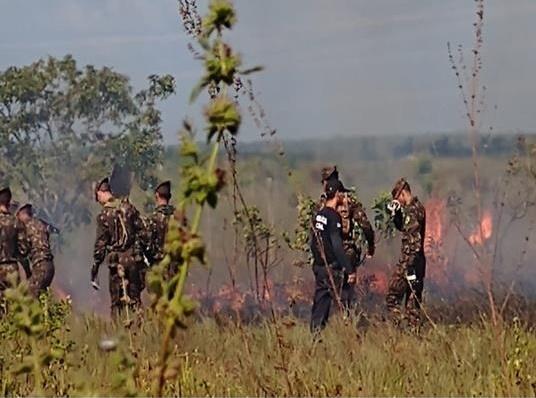 Operação controla queimada e apreende madeira ilegal no Amapá