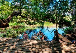 Conheça as atrações do Bioparque da Amazônia