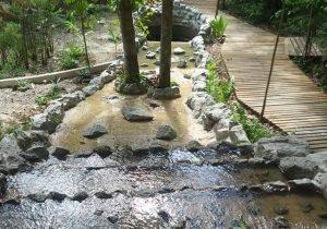 Bioparque da Amazônia: profissionais de turismo são qualificados