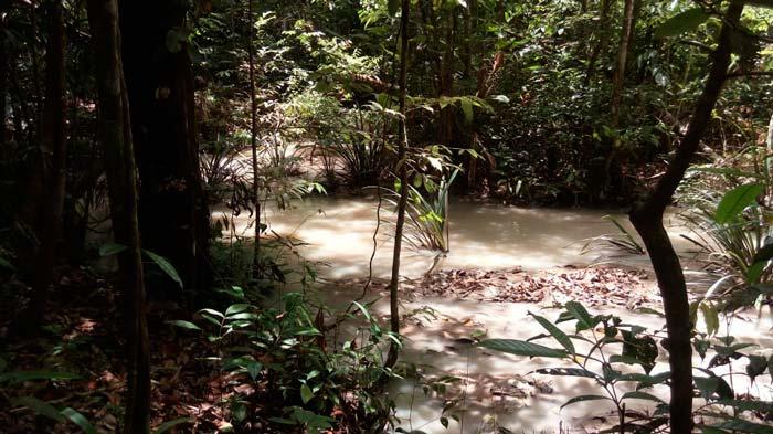 Mistério: Equipes tentam descobrir fonte de poluição em Porto Grande