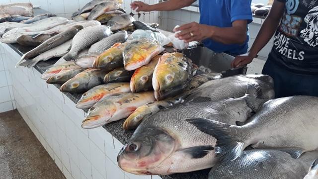 Período de defeso: confira as obrigações de pescadores e comerciantes