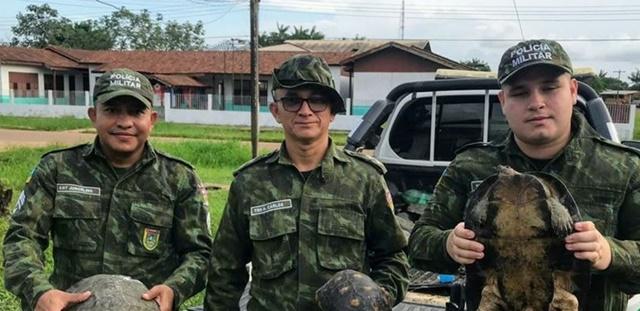 Em Pracuúba, tracajás e jabutis furtados de reserva são recuperados