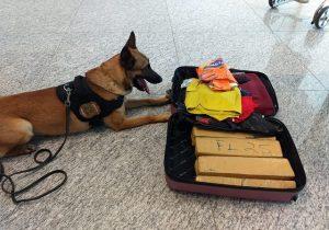Mulher é farejada com 9kg de drogas no Aeroporto de Macapá