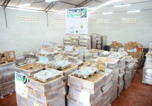 Alfabetização no Amapá ganha reforço de 88 mil livros